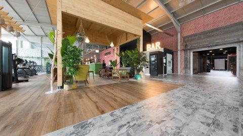 wineo Bodenbelag Eingangsbereich Holzoptik mittel Fantasieoptik hell