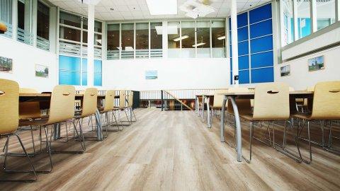 wineo Purline Bioboden Holzoptik Restaurant Tische Stühle Klinikum modern