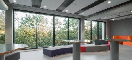 wineo Purline Bioboden Rollenware grau groß hell Sitzecke Glasfenster