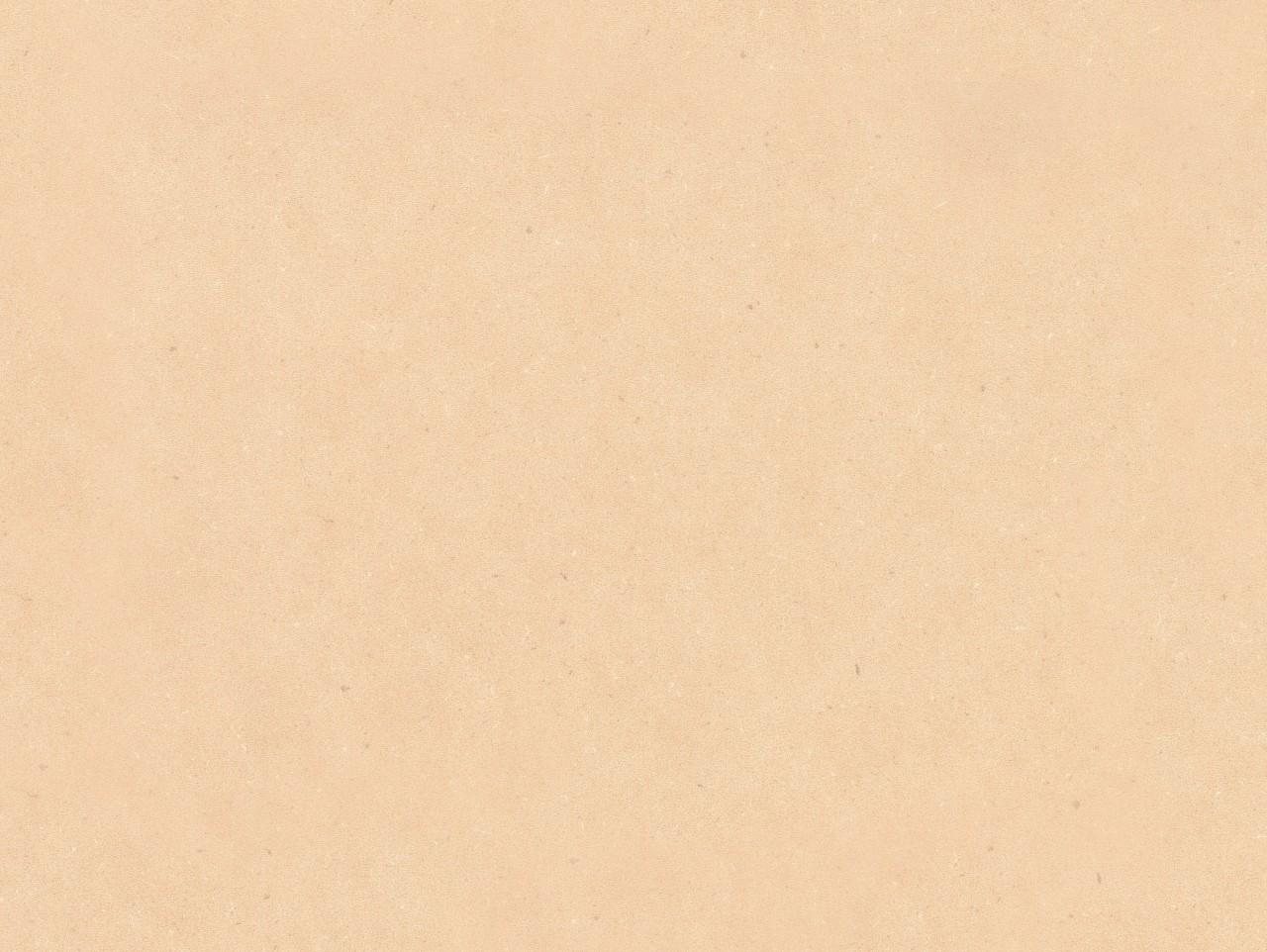 Detail_PLR002C_Sinai_Sand.jpg